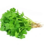 گڈی دھنیا (Coriander Leaves)