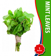 Mint Leaves (1 Bunch) (Podina Gadi)